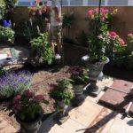 Kleingartenanlage Planen